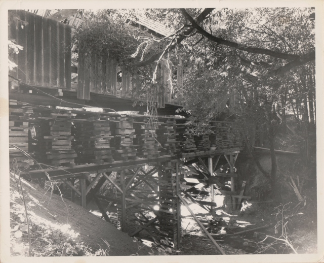 Unbelievable photo of Felton Covered Bridge undergoing repairs. Undated.