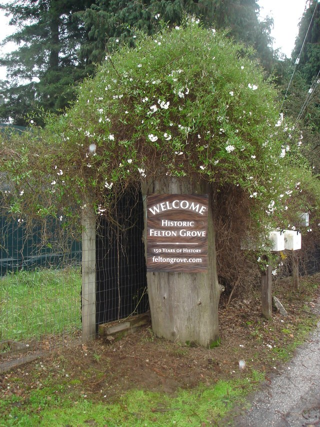 Entrance to Felton Grove