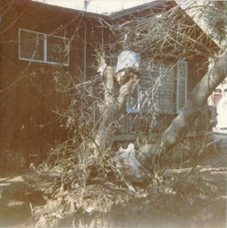 Day after Jan. 4, 1982 Flood in Felton Grove. 490 River Rd. Photo by Vicki Wees.