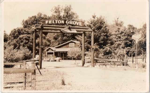 1937 Postcard Courtesy of Ronnie Trubek. Entrance to the new Felton Grove Resort, formerly Felton Grove Auto Camp.